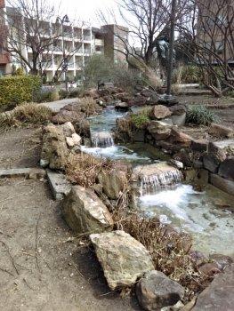baccus park